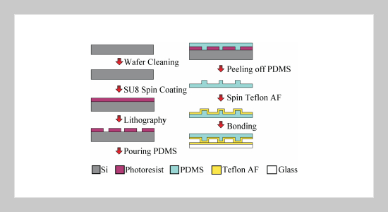 Fabrication and Characterization of Teflon AF-Coated Liquid Core Waveguide Microchannels in PDMS