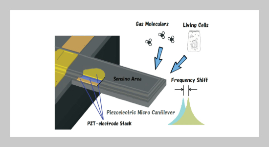 Hybrid Piezoelectric MEMS Resonators for Application in Bio-Chemical Sensing