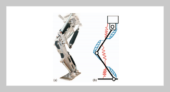 Squat and Standing Motion of a Single Robotic Leg Using Pneumatic Artificial Muscles